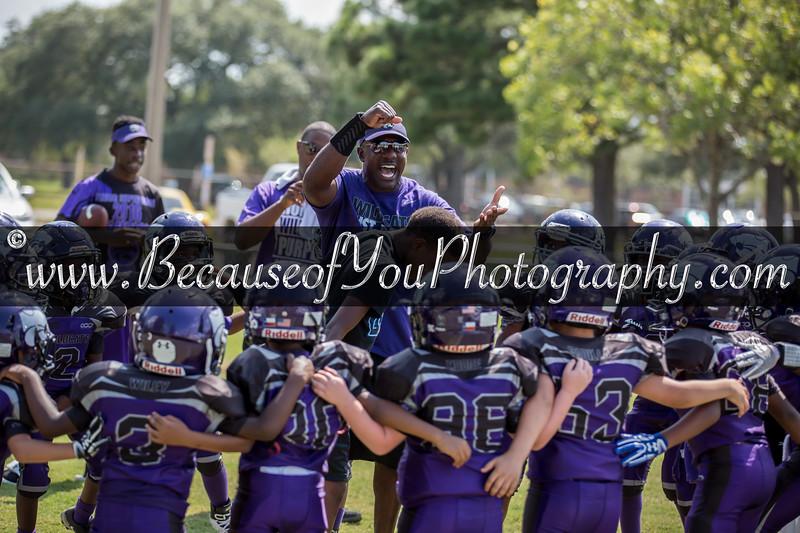 SO-Wildcats Purple