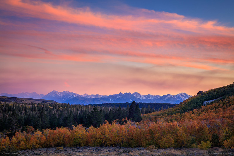 Eastern_Sierra_Fall_Color_Sunset_Aspen_Trees_Sherwin_Range_Mountains_T6A4064.jpg