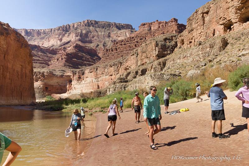 Grand-Canyon-2019-07-99.jpg