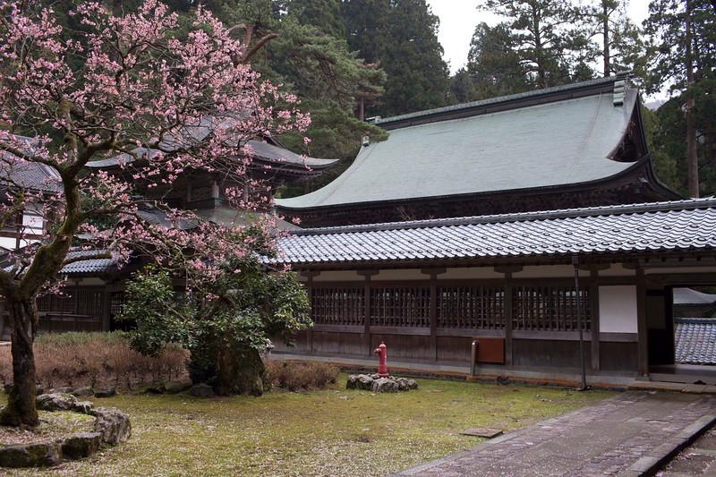 Eiheiji Temple 10041310 .jpg