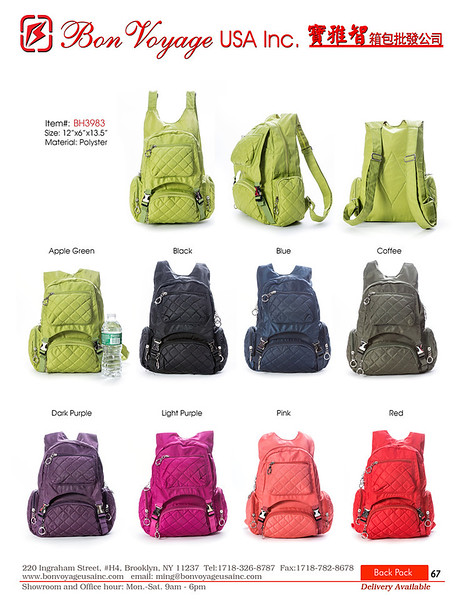 BackPack p67-X2.jpg