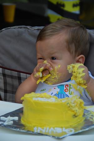 Gavin's 1st Birthday