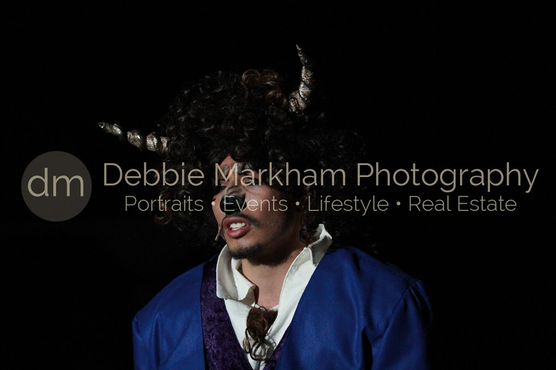 DebbieMarkhamPhoto-Opening Night Beauty and the Beast156_.JPG