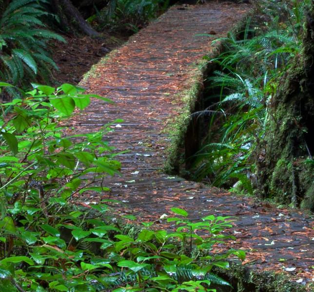 Path Tile.jpg