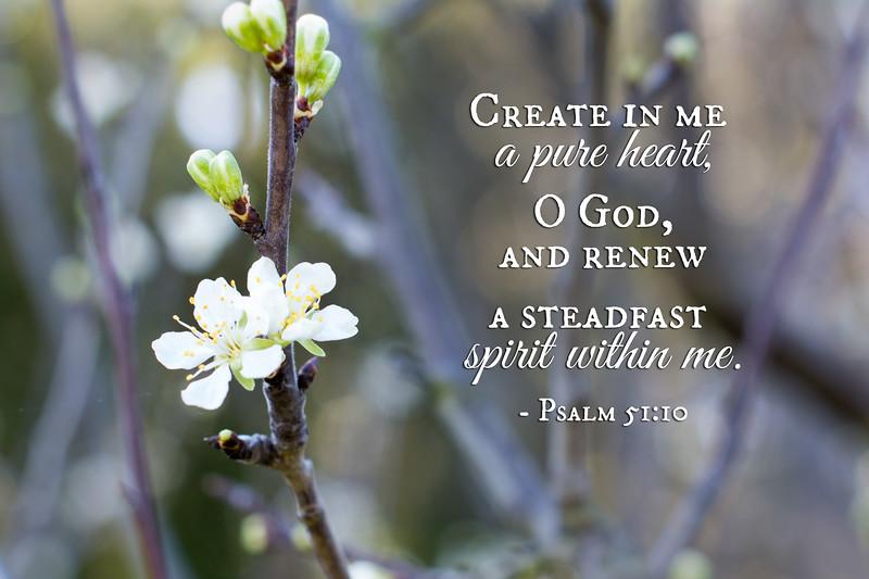 19_Psalm51-10_NJ_2017-3-23.jpg
