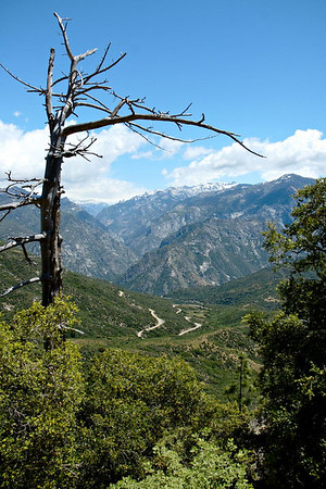 Kings Canyon National Park: The Canyon