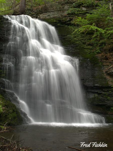 Bushkill Falls 05_07 033.JPG