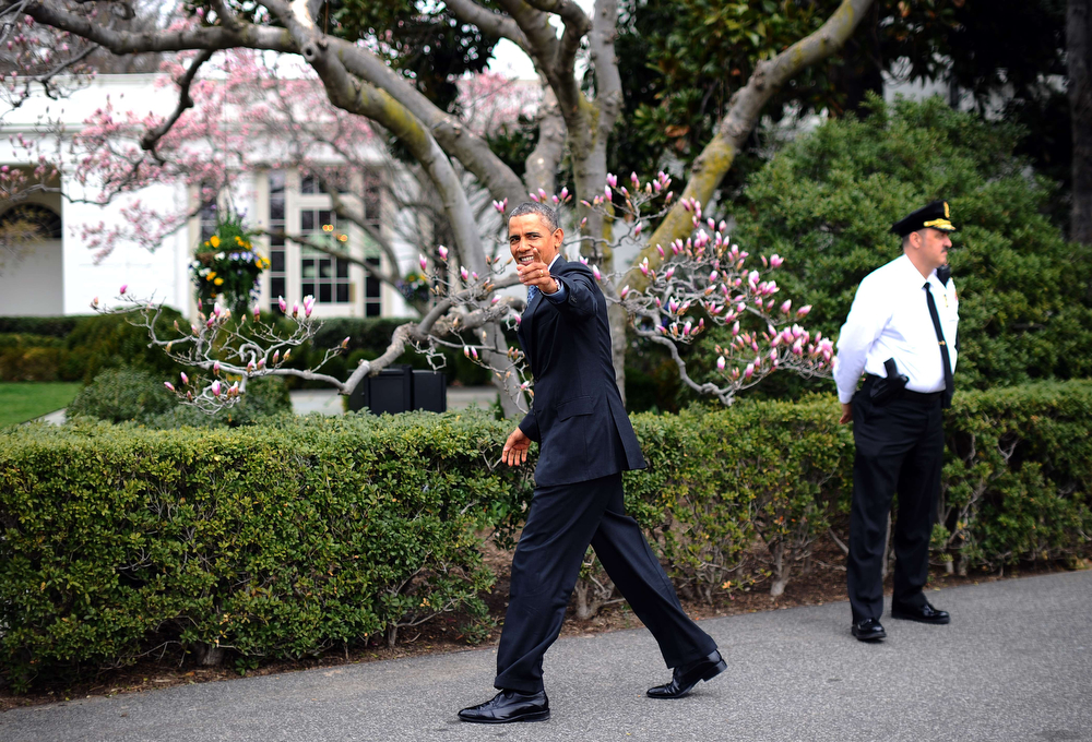 . US President Barack Obama (C) walks back to the Oval Office after a ceremony on the South Lawn at the White House in Washington on April 1, 2014. Obama honored the Boston Red Sox for their 2013 World Series Championship. (JEWEL SAMAD/AFP/Getty Images)