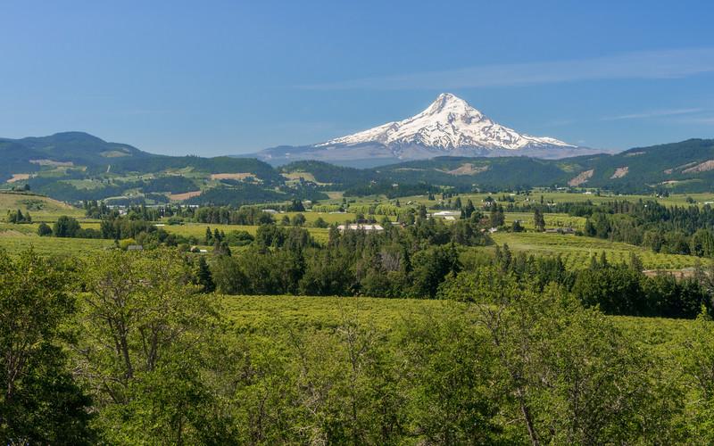 Oregon-138.jpg