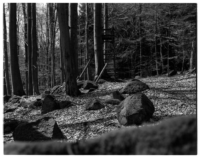 Odenwald004.jpg