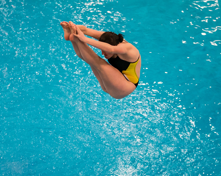 D1 Diving-15.jpg