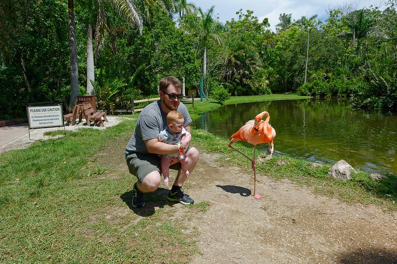 Come Closer- Sarasota Jungle Gardens - Sarasota Florida