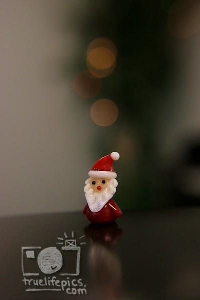 Santa_0004.JPG