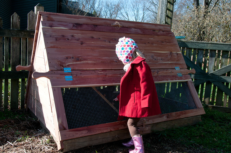 Ah, here is the new cedar A-Frame chicken Coop.