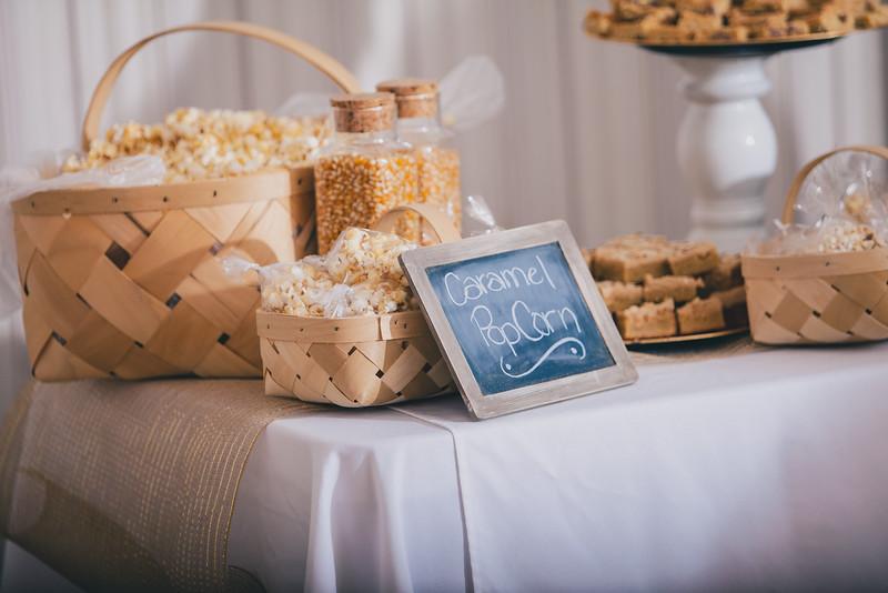 Tyler Shearer Photography Brad and Alysha Wedding Rexburg Photographer-2201.jpg