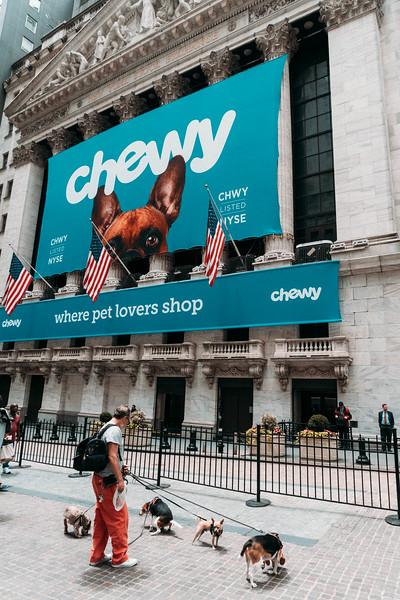 Dog walker NYSE 2.jpg