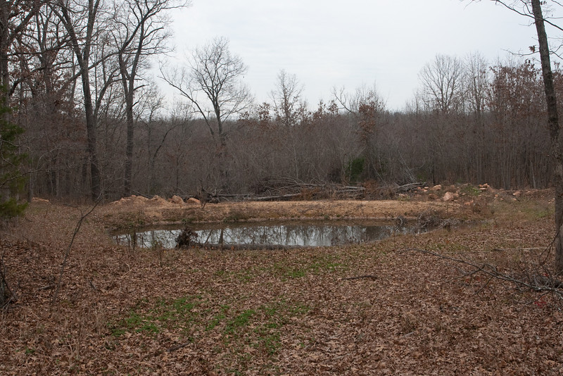 Constructed wildlife ponds at Ft. Leonard Wood, MO
