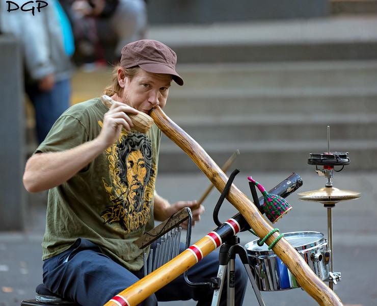Didgeridoo Musician