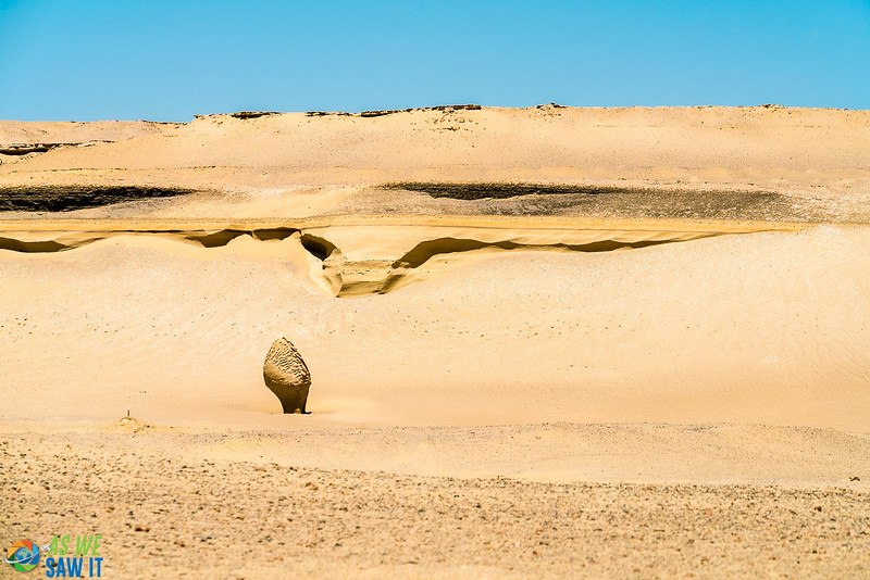 Wadi-El-Hitaan-02411.jpg