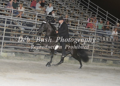 CLASS 29  WALKING HORSE STAKE SPECIALTY