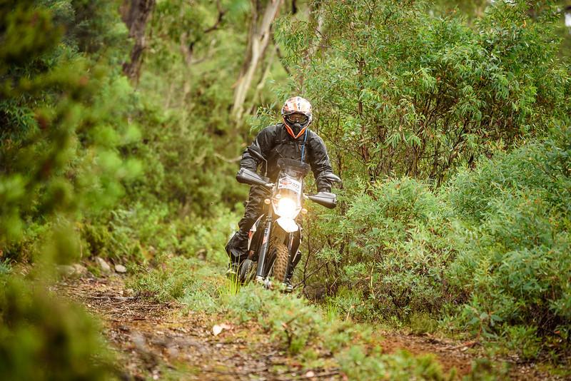 2019 KTM Australia Adventure Rallye (450).jpg