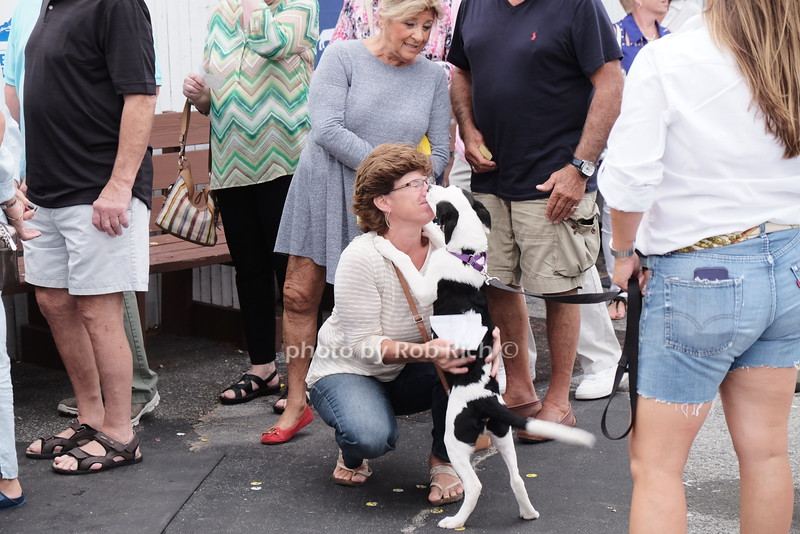Southampton Animal Shelter 7th.Annual Benefit at the Boardy Barn in Hampton Bays on 9-10-16.  all photos by Rob Rich/SocietyAllure.com © 2016 robwayne1@aol.com 516-676-3939