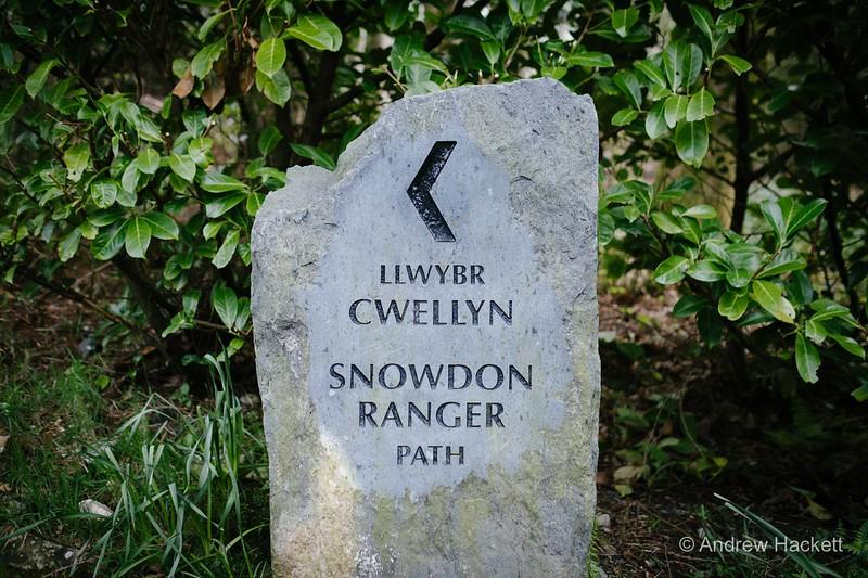 slipperymouse-ranger-path-05.jpg