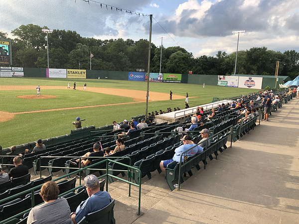 Bees Fans 7-16-20