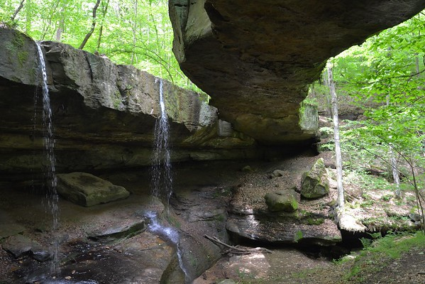 Rockbridge Natural Area