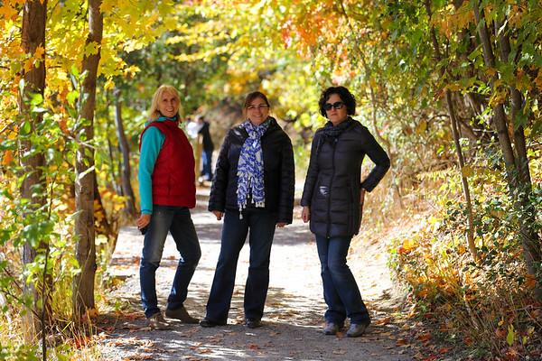 Autumn in Syracuse - October 11,  2014