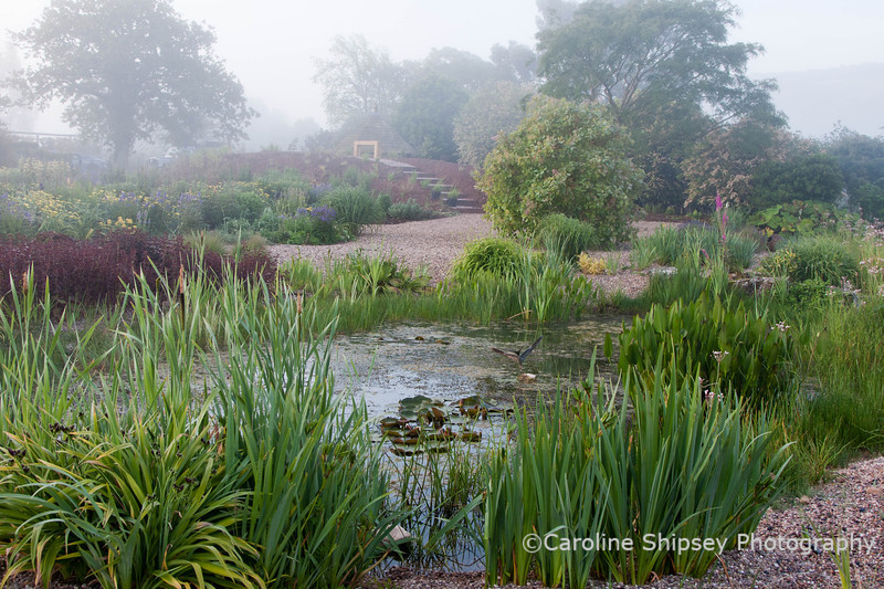 The Organic Gardens, Holt Farm-2682.jpg