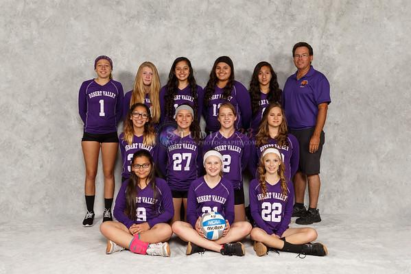 Desert Valley Volleyball Club