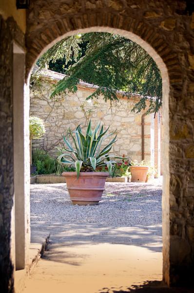 Plant through arch