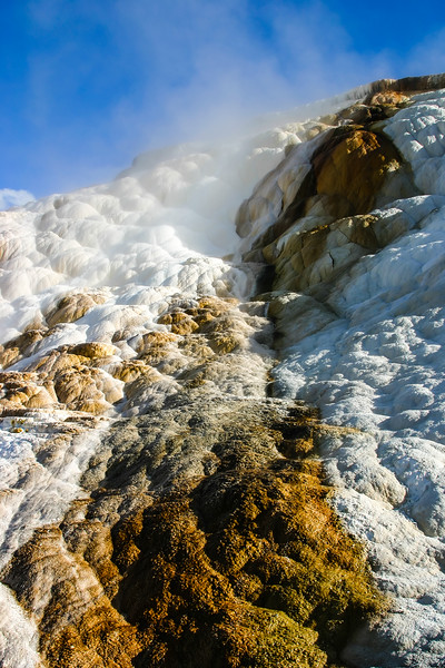 Geothermal formations created by mineral rich waters in Yellowstone National Park.