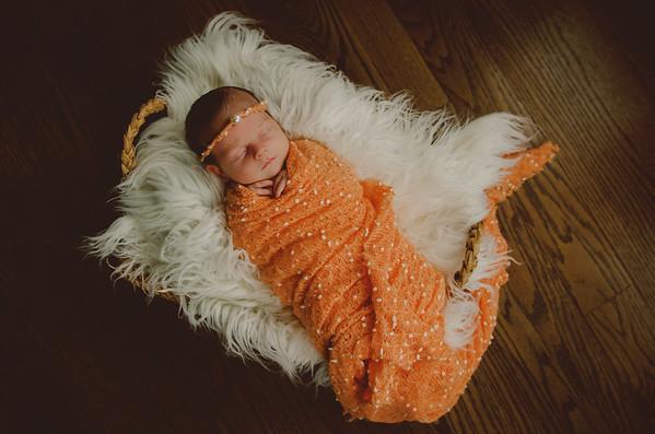 02.23.19 Holmes Newborn Photos