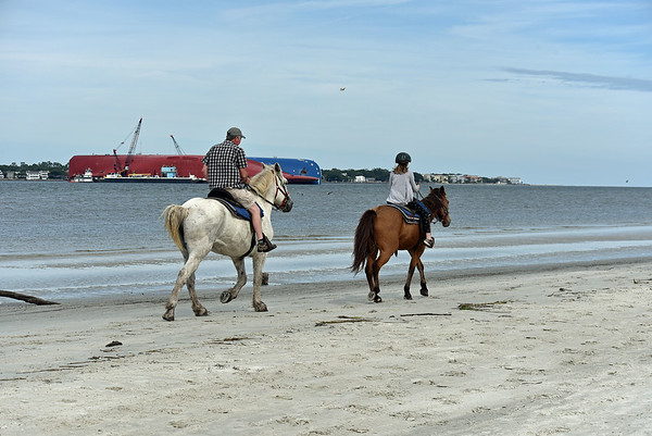 Jekyll Island North End with Golden Ray, Horses and more