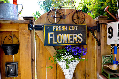 fullerton beautiful garden tour