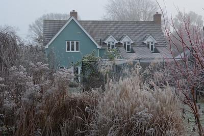 Frosty Lilacs in December 2016