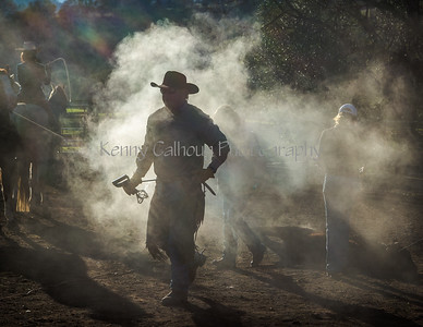 Yolo Land & Cattle 12-28-2014