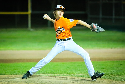 2015 Orioles Turlock American Little League