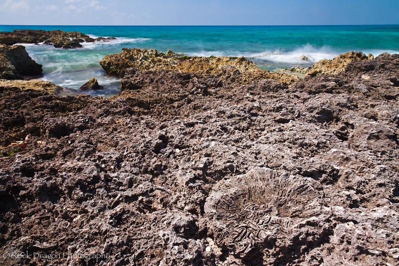 The Caribbean Sea from the shores near Playa del Carmen.