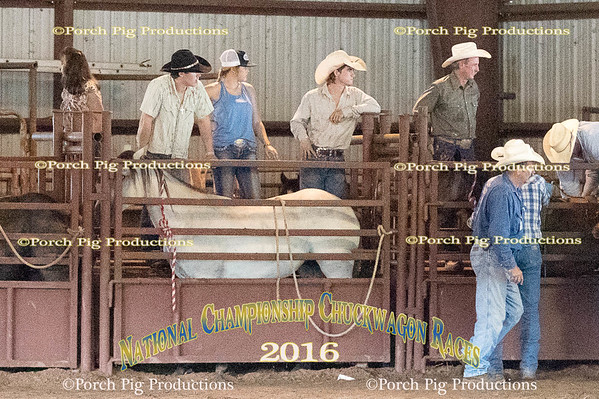 Bronc Futurity and its fans