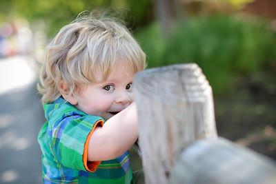 Wren Oliver- Spring Mini