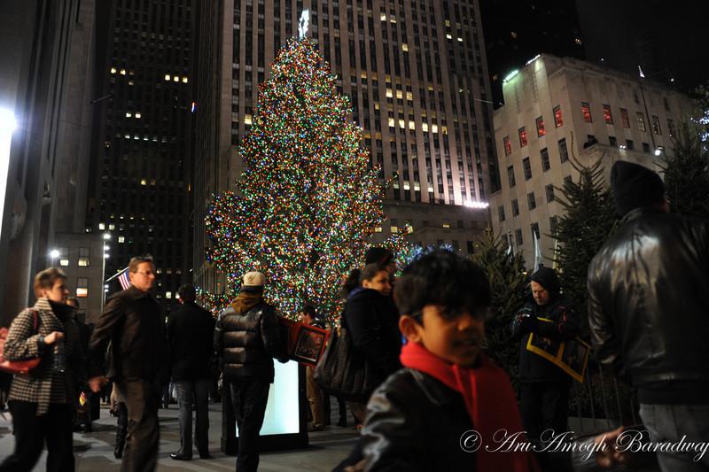 2012-12-22_XmasVacation@NewYorkCityNY_019.jpg