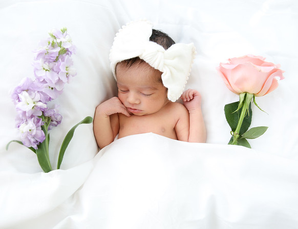 Newborn Photo Shoots