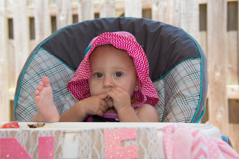 Lila's 1st Bday Party-160.jpg