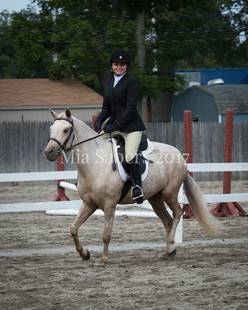 Sussex County  A Horse Show 2017