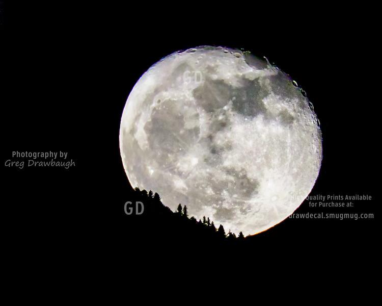 Beaver Moon