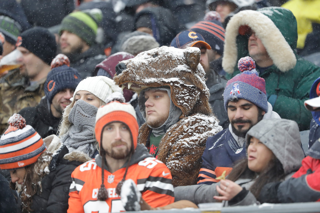 . A Chicago Bears fan wears a bear costume in the stands against the Cleveland Browns in the first half of an NFL football game in Chicago, Sunday, Dec. 24, 2017. (AP Photo/Charles Rex Arbogast)