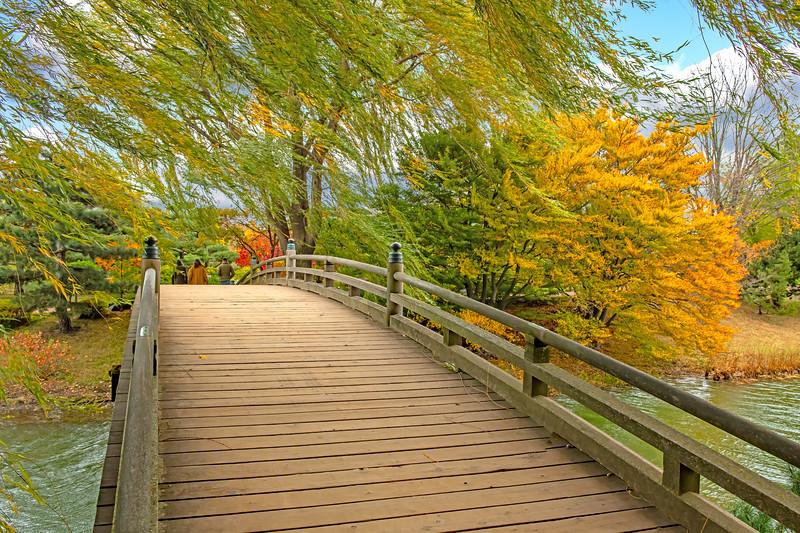 Japanese Garden at Chicago Botanic Garden